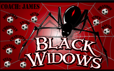 Black_widows510x312